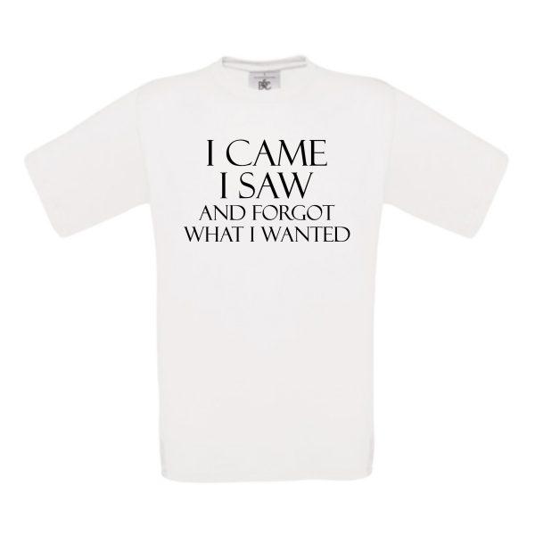 shirt I Came I Saw wit