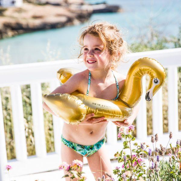 Zwemband Gouden Zwaan 2